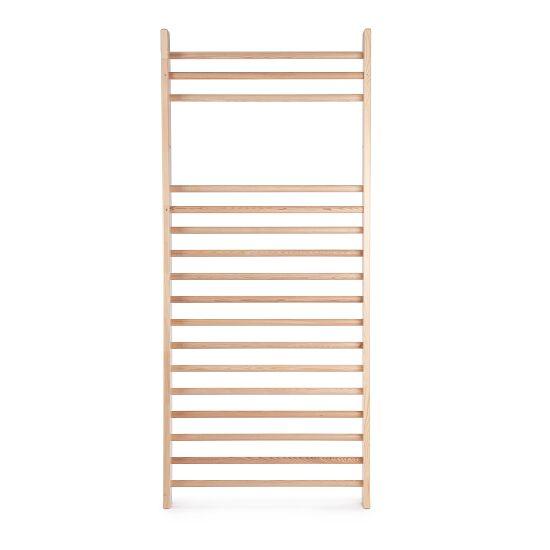 Sport-Thieme® Wall Bars U3