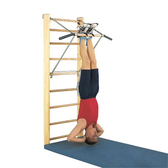 "Sport-Thieme® Wall Bars with ""Premium"" Pull-Up Bar Wall bars, 210x80 cm"