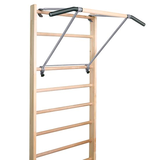 Sport-Thieme Wall Bars