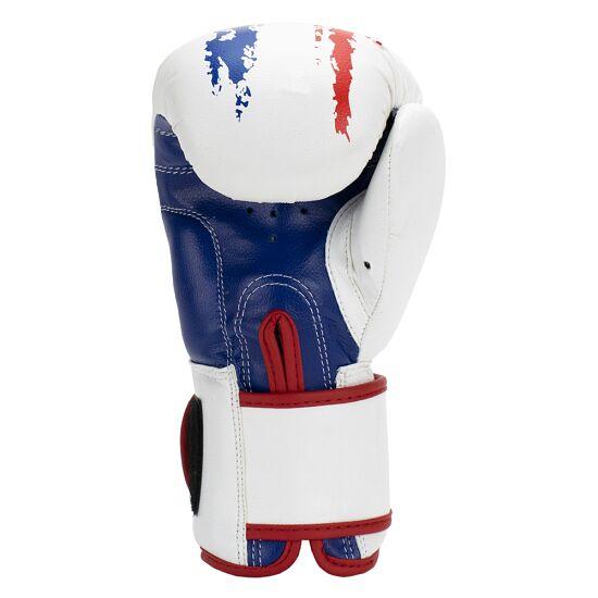 "Super Pro Boxhandschuhe ""Talent"" Weiß-Rot-Blau"