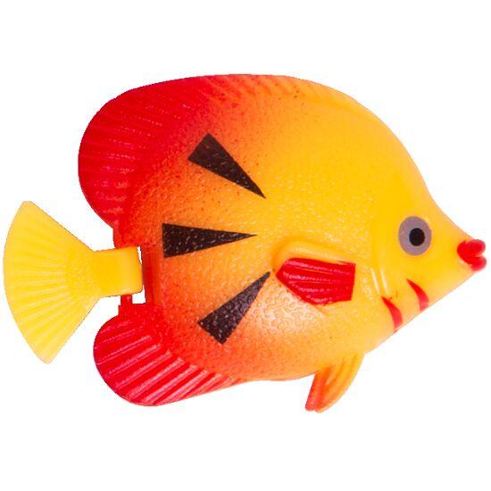 Svømmende fisk til boblesøjler
