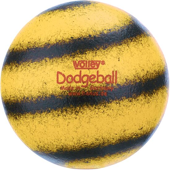 Volley Dodgeball Ball