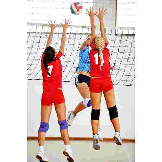 Volleyball Turneringsnet DVV I, med omløbsrulle