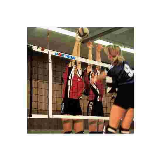 Volleyball Turneringsnet DVV I