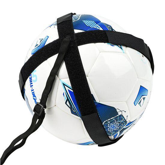 WV Ball Trainer
