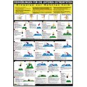 Chartex Stretching Exercise Charts (In German)