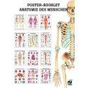 Miniposter-Booklet Anatomie