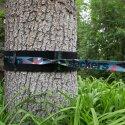 "Slackers Baumschutz-Set ""Tree Huggerz XXL"""