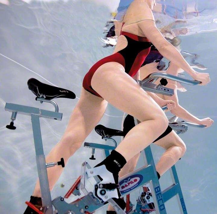 Sharkbike im Sport-Thieme Shop ansehen