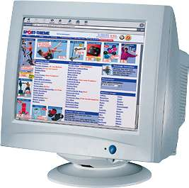Sport-Thieme Online Shop 1996
