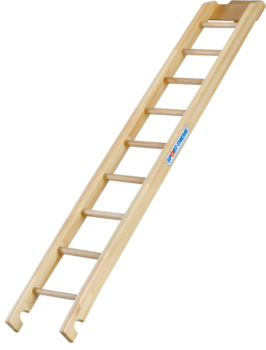 Sport-Thieme Kombi-Kletterleiter