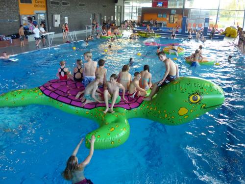 """Airkraft Wasserspielgerät  """"Schildkröte"""""""