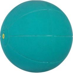 WV Medicinbold
