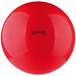 Gymnic Exercise Ball ø 65 cm
