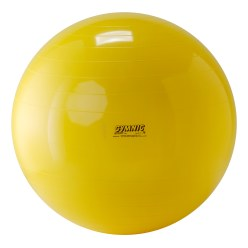 Gymnic® Exercise Ball ø 55 cm