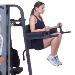"Leg Raise and Dips Attachment for ""G-9S"""