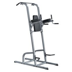 Body Solid Dips and Pull-Up Station
