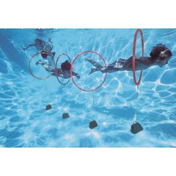 Sport-Thieme® Diving Hoop Game