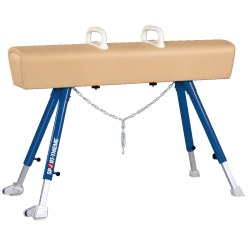 Sport-Thieme Pommel Horse With metal legs