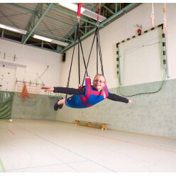Sport-Thieme® Suspended Swing