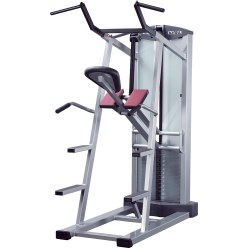 Schnell® Pull-Up & Dips Machine
