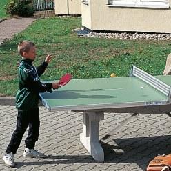"""Tischtennis-Plattenhälfte """"Premium"""""""