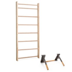 Sport-Thieme Wall Bars with Pull-Up and Dip Bar