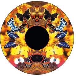 Effekthjul Stjernehimmel