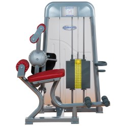 Ergo-Fit® Back Extension 4000