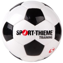 "Sport-Thieme Fußball ""Training"""