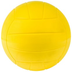 Sport-Thieme PU-Volleyball