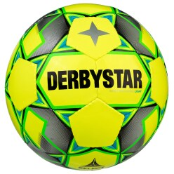 "Derbystar ""Basic Pro"" Futsal Ball"