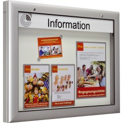 """S-Series"" Landscape Information Display Unit"