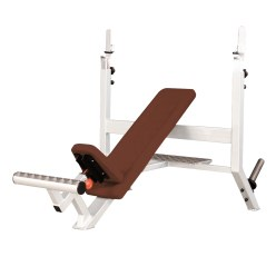 "Sport-Thieme ""SQ"" Incline Bench"