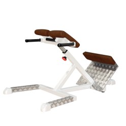 "Sport-Thieme ""SQ"" Back Extension Bench"
