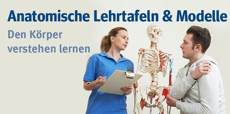 Anatomsiche Lehrtafeln - Den Körper verstehen lernen
